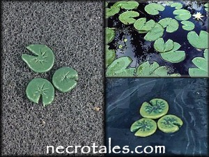 More lilypads.